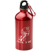 Carabiner Stainless Steel Water Bottle - 16 oz.
