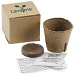 Plant in a Recycled Box
